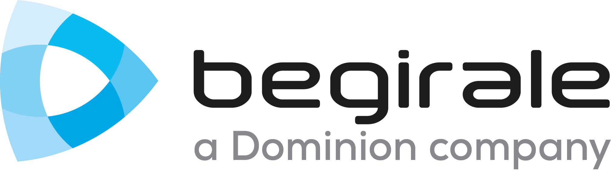 Begirale | Develops control and risk minimizing solutions for facilities, processes and individuals
